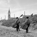 1962.Fruška gora.Faeront