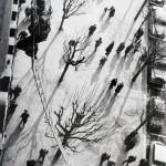 1963.Beograd.Nadnica za strah