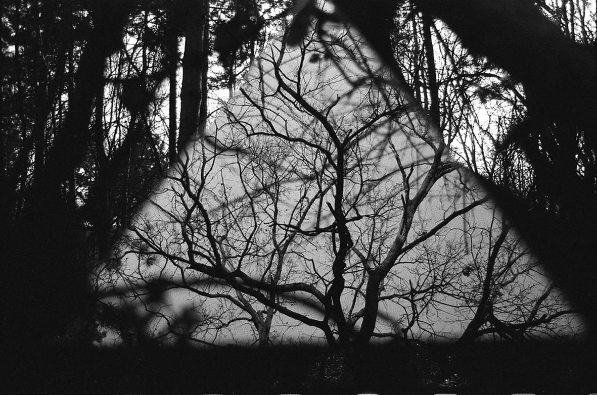 The Art of Seeing – curated by Klavdij Sluban